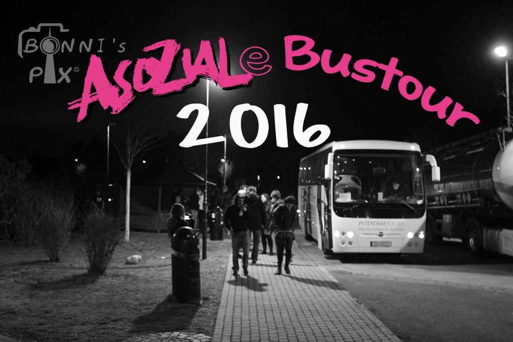 Erlebnisbericht – Asoziale Bustour 2016